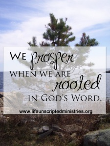 prosper when rooted in God's Word